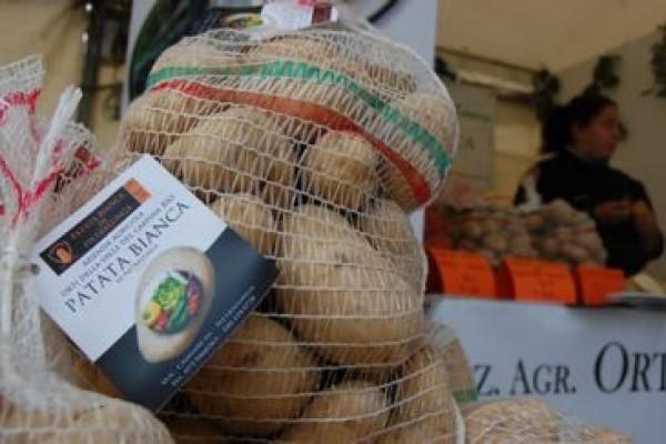 patata-pietralunga-jpg-crop-displayF6AD9F75-0F47-9F29-3880-A716827BD79F.jpg