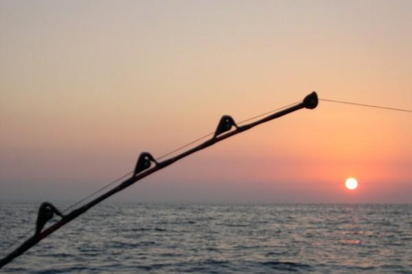 pesca-jpg-crop-display229AAE6D-A6E9-2C16-A02B-3E2A999FFCE1.jpg